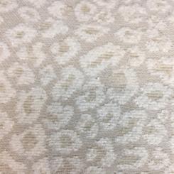 Spots Snow (A)