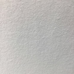 Sunbrella Terry Natural (LP)
