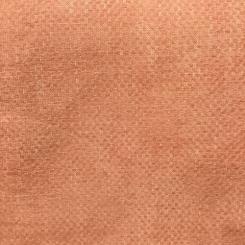 Leadership Coral (LP)